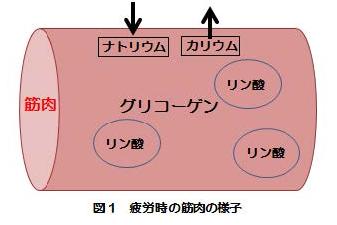 column02_img1